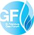 VI Петербургский международный газовый форум 4-7 октября 2016